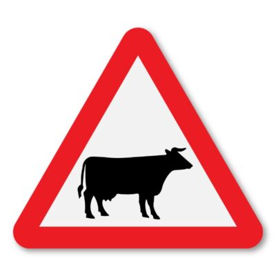 Cattle-In-Road-Sign-for-Posts-diagram-548