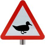 Tennants-Wild-Fowl-In-Road-for-Posts